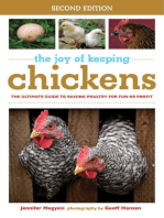 The Joy of Keeping Chickens