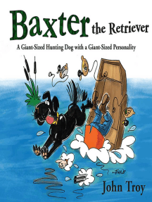 Baxter the Retriever: A Giant-Sized Hunting Dog with a Giant-Sized Personality