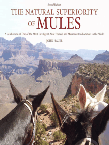 The Natural Superiority of Mules: A Celebration of One of the Most Intelligent, Sure-Footed, and Misunderstood Animals in the World, Second Edition