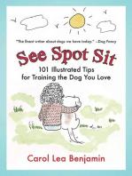 See Spot Sit