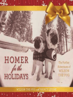 Homer for the Holidays