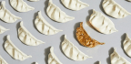 Through Food Art, Asian-Americans Stop 'Pushing Heritage To The Back Burner'