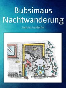 Bubsimaus Nachtwanderung: Ein Abenteuer-Kinderbuch