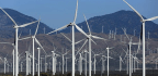 California Set A Goal Of 100 Percent Clean Energy, And Now Other States May Follow Its Lead