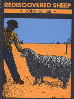 Rediscovered Sheep