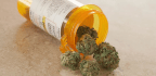L.A. Doctor In Trouble After Prescribing Marijuana To 4-year-old