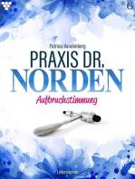 Praxis Dr. Norden 6 – Arztroman