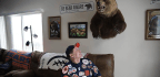 Bears Superfan Gets Into The Inaugural Hall Of Fans