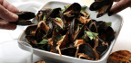 Valentine's Day Shellfish Feast — When You Want To Make A Fuss Without Making A Fuss