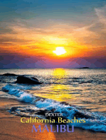 California Beaches - Malibu