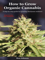 How To Grow Organic Cannabis: A Step-by-Step Guide for Growing Marijuana Outdoors