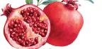 Super Antioxidant Foods
