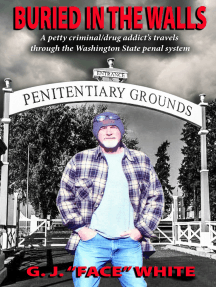 Buried in the Walls: A petty criminal/drug addict's travels through the Washington State penal system