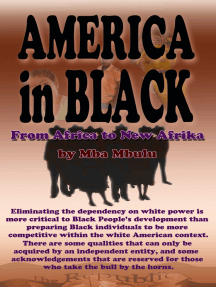 AMERICA in BLACK: From Africa to New Afrika