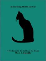 Introducing Morris The Cat