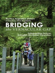 Bridging the Vernacular Gap: Safeguarding Devices in English-Romanian Translation