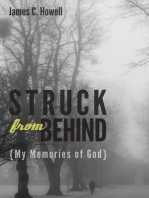 Struck from Behind