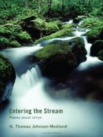 Entering the Stream