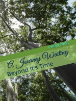 A Journey Waiting Beyond It's Time