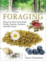 Foraging