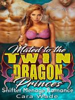 Mated To The Twin Dragon Princes