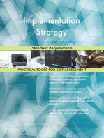 Implementation Strategy Standard Requirements