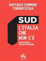 Sud l'Italia che non c'è