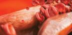 El Colesterol, ¿un Arma Del Cerebro Para Proteger La Memoria?