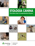 Etología canina: Guía básica sobre el comportamiento del perro