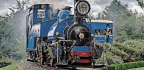 Summer Season At Launceston For Darjeeling Engine 10 Years On