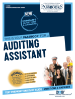 Auditing Assistant