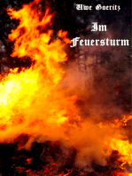 Im Feuersturm