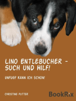 Lino Entlebucher - Such und Hilf!
