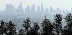 EPA Adviser Is Promoting Harmful Ideas, Scientists Say