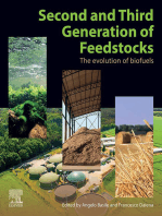 Second and Third Generation of Feedstocks