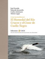 Crisis Socioambiental: El Humedal del Río Cruces y el Cisne de Cuello Negro