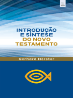 Introdução e síntese do Novo Testamento: Breve introdução ligada ao Comentário Bíblico Esperança do NT.