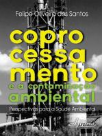 Coprocessamento e a Contaminação Ambiental: Perspectivas Para a Saúde Ambiental