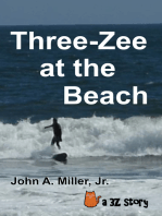 Three-Zee at the Beach