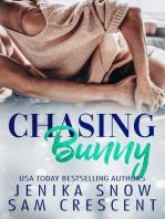 Chasing Bunny