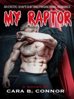 My Raptor, Until November