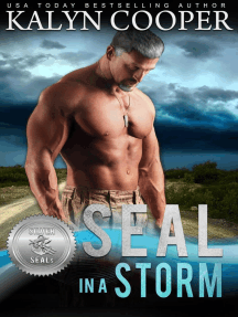 SEAL in a Storm: Silver SEALs, #5