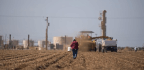 Trump Fracking Plan Targets Over 1 Million Acres In California
