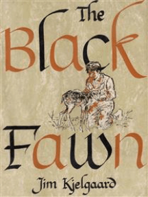 The Black Fawn