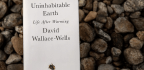 Humans Have 30 Years To Stave Off Climate Catastrophe, 'Uninhabitable Earth' Author Says