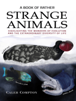 A Book of Rather Strange Animals