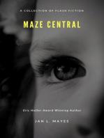 Maze Central