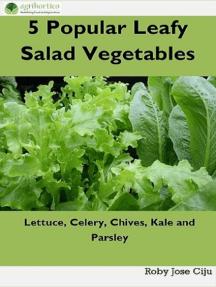 5 Popular Leafy Salad Vegetable