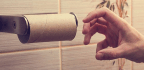 What Ancient Romans Used Instead of Toilet Paper
