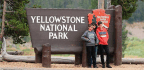 New Yellowstone Superintendent Looks To Technology, Housing